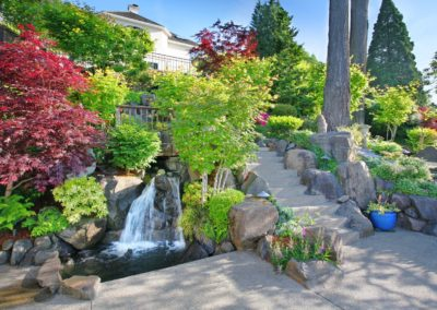 Backyard of Luxury Home with Colorful Plants
